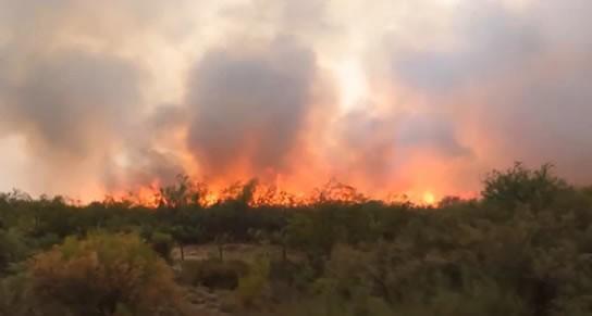 Hay 300.000 hectáreas afectadas por incendios