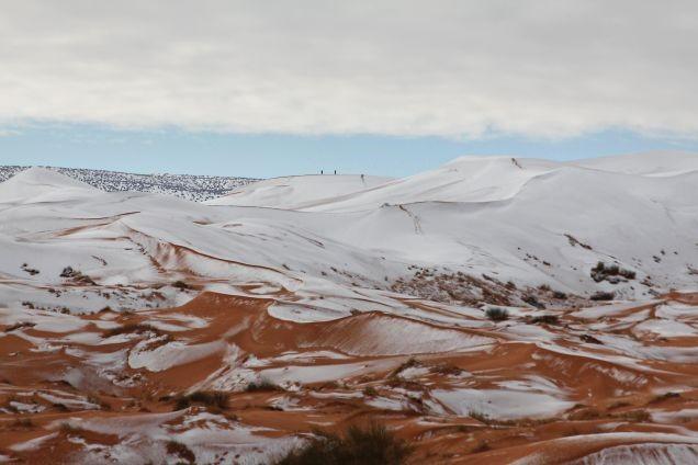 Reviví las mejores fotos de la nevada en el desierto del Sahara