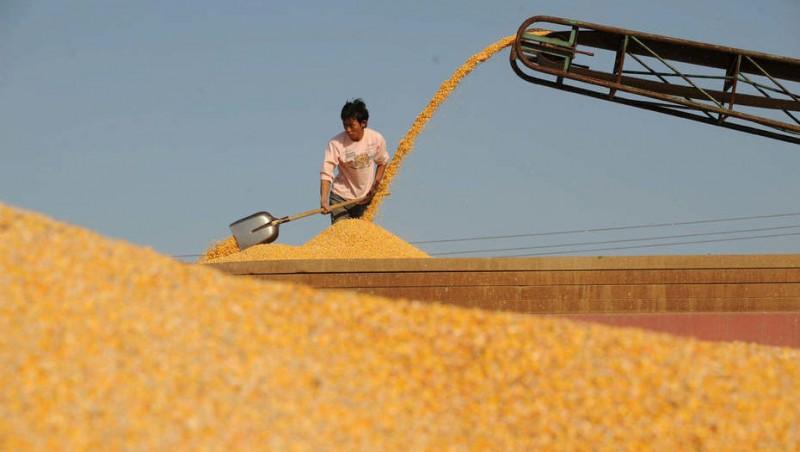 Se acelera la transformación del agro chino