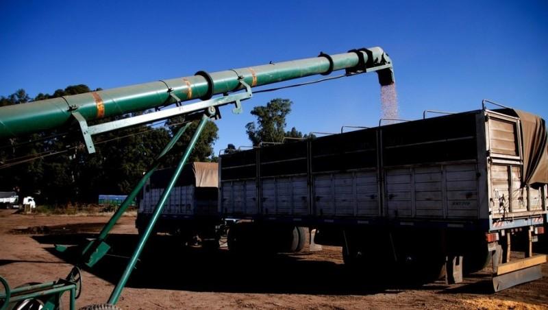 Camiones: se amplió el límite de toneladas para el transporte de cargas