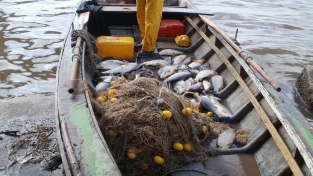 Se levantó de manera parcial la veda pesquera en la provincia