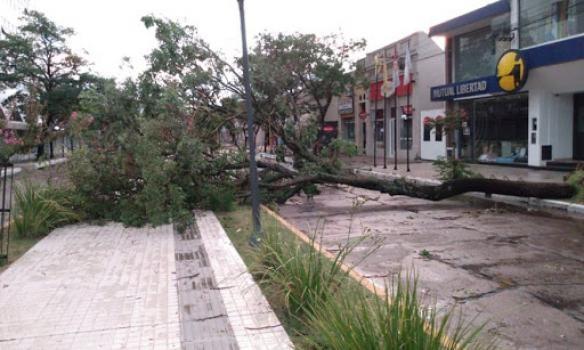 La provincia asiste a las localidades afectadas por la fuerte tormenta del fin de semana