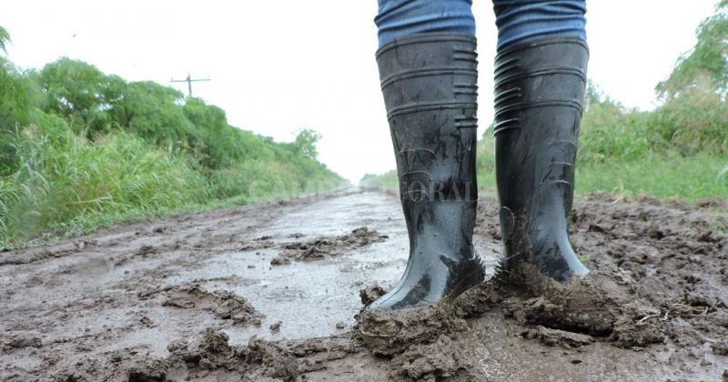Cambio de ánimo en el campo santafesino por la sucesión de lluvias