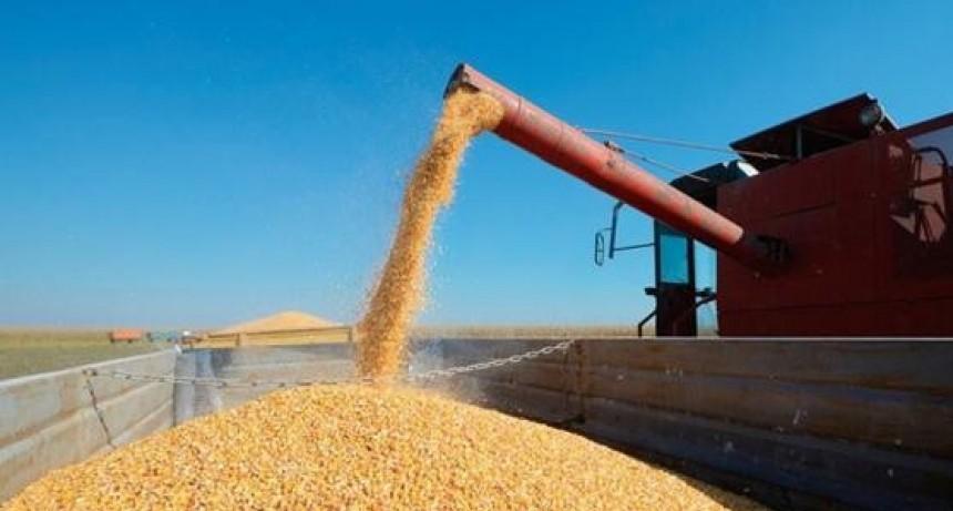 Coninagro critica la suspensión de exportaciones pero no va al paro