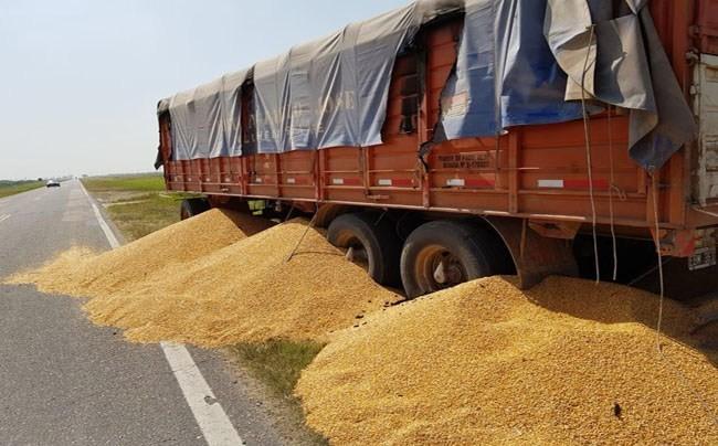Piquetes de camioneros: paralización de establecimientos agroindustriales y suspensión de personal