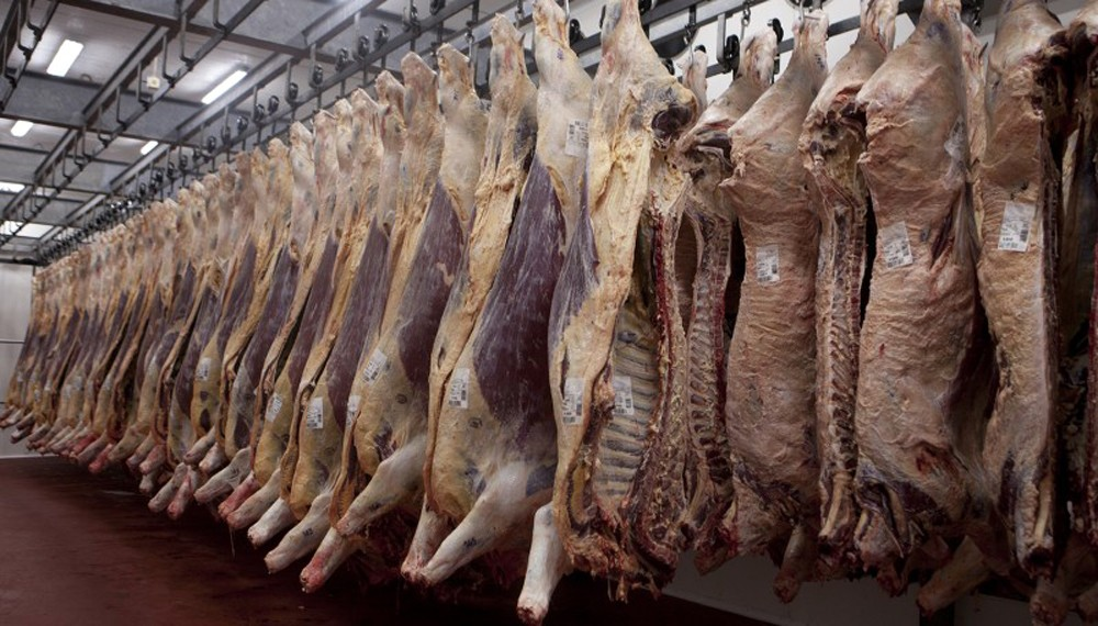 Aseguran que los cambios en el mercado ganadero y la situación económica complican a los frigoríficos