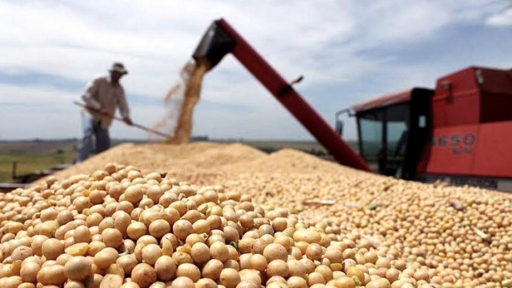 Se estancaron las ventas externas de soja y maíz