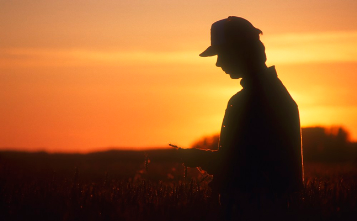 La confianza del campo por el piso: para el 83% de los productores no es buen momento para invertir
