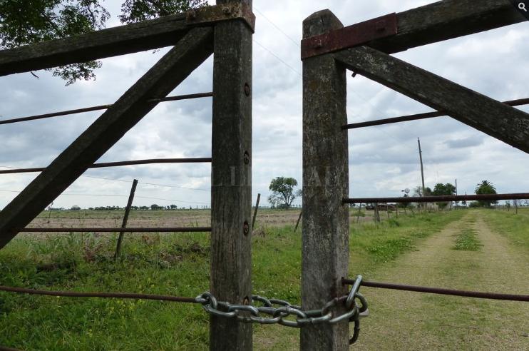 El sector inmobiliario rural comienza el año en alza