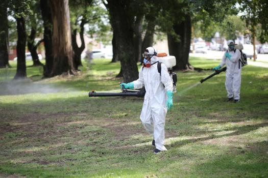La Municipalidad intensifica la fumigación de mosquitos