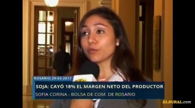 Soja: Se deterioró 18% el margen neto del productor
