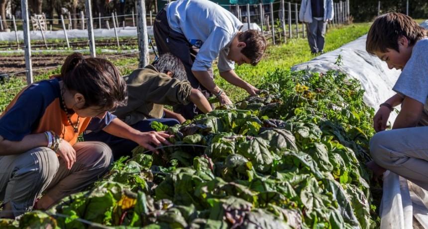 La educación agraria se enfoca hacia las nuevas tecnologías