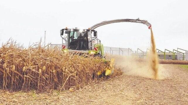 Los costos para encarar la actual campaña agrícola se redujeron 14%