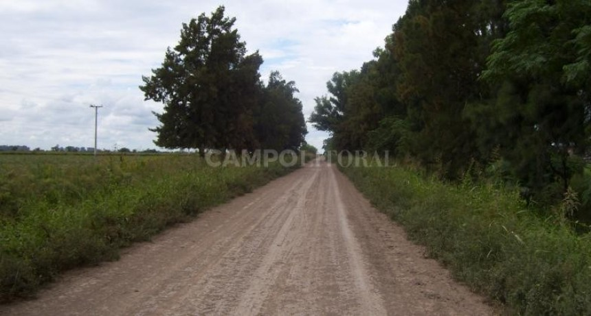 Fuerte apuesta por los caminos rurales