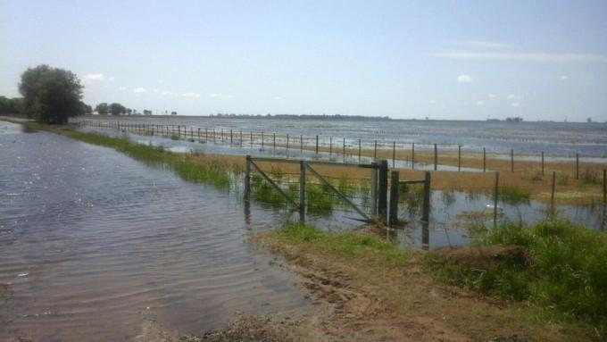 Los campos de General Villegas, de rendir 50 quintales de soja a quedar bajo el agua