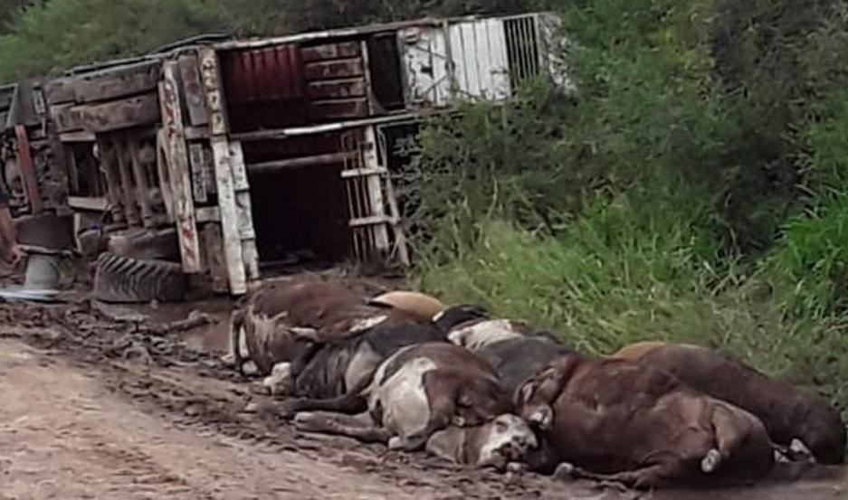 Volcó un camión cargado con animales