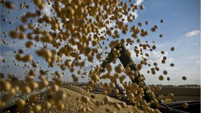 El precio de la soja no encuentra su techo, mientras la cosecha avanza a paso firme