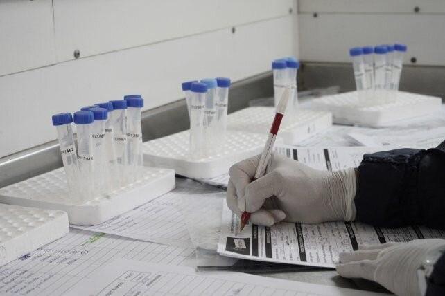 Un equipo dirigido por rosarinos avanza en el hallazgo de una droga contra el Covid