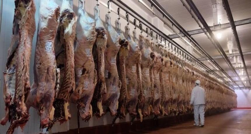 Establecen un registro de exportación de carne