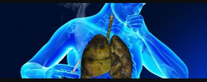 Afecciones respiratorias: qué debemos tener en cuenta para evitarlas