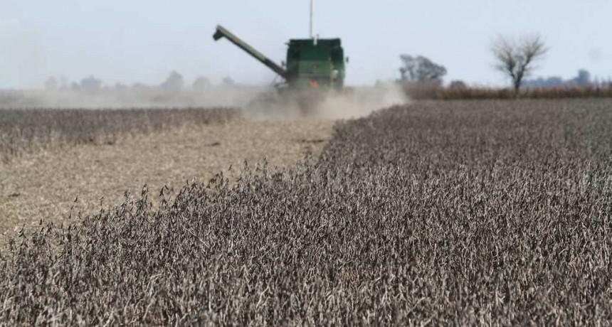 La sequía costará U$S 8 mil millones