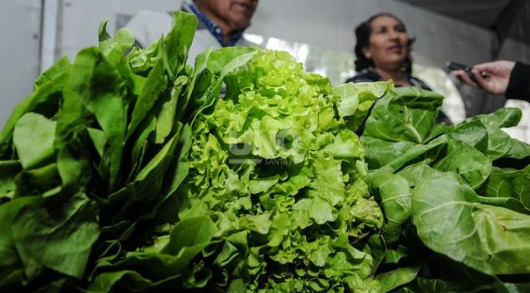 El mercado agroecológico cobra popularidad en Santa Fe