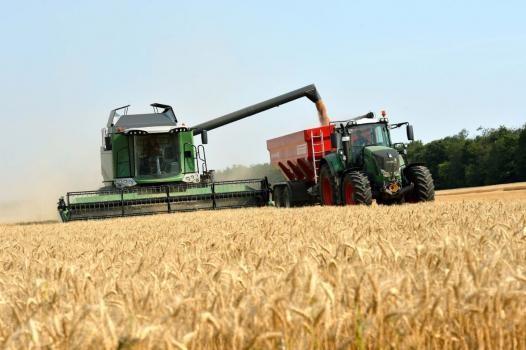 La siembra de trigo llegó al 75% de lo estimado en el centro y norte santafesino