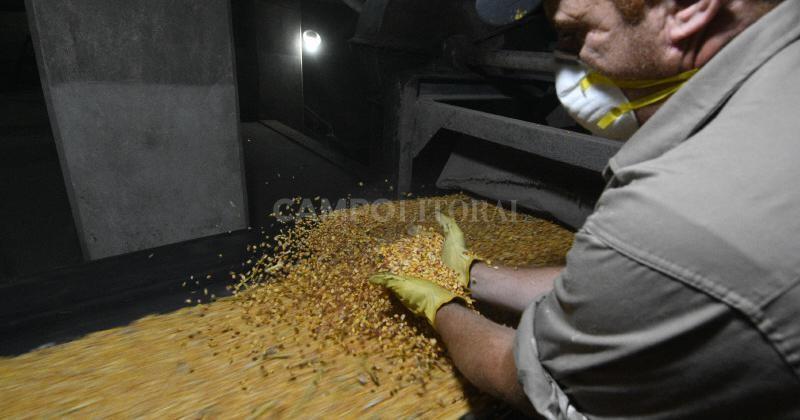Se exportaron más de 5 mil toneladas de granos con certificación electrónica