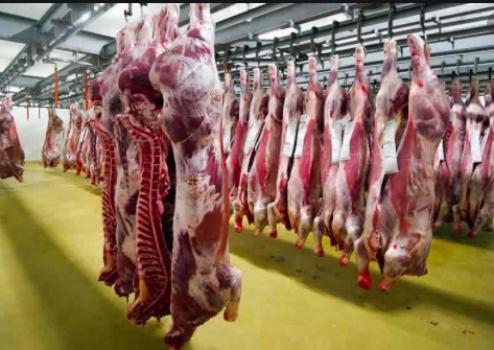 Aún no hay acuerdo en la problemática de las exportaciones de carne