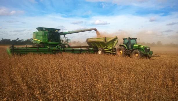 Concluyó la cosecha de soja tardía en el centro-norte de la provincia, con disparidad de rindes