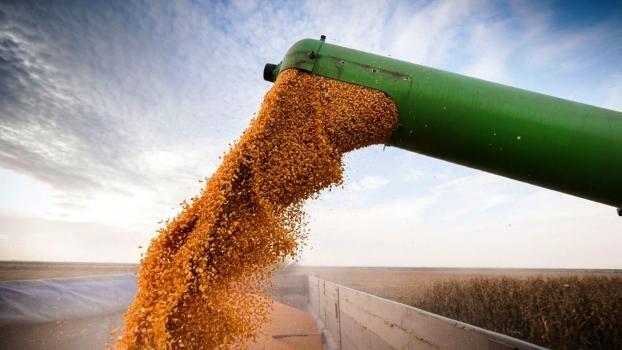 En 20 días, exportaron más de 7.000 toneladas de maíz desde el puerto de la ciudad de Santa Fe