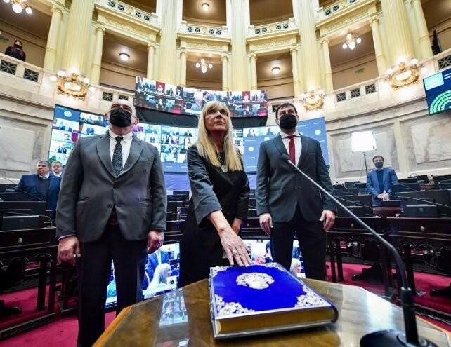 Vucasovich asumió la banca que Reutemann dejó vacante en el Senado