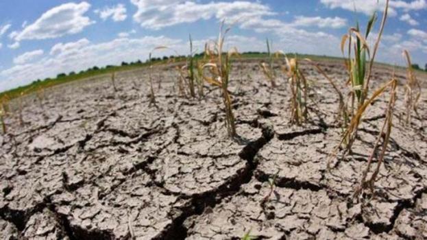 La sequía alcanza a Santa Fe y a otras 10 provincias y genera pérdidas en la actividad agropecuaria