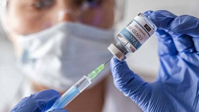 Vacunas contra el Covid: modelo para armar