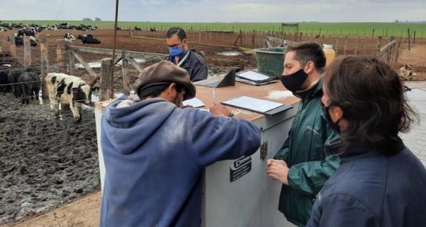 Rescataron a un hombre que fue explotado durante 20 años en un tambo de Rufino