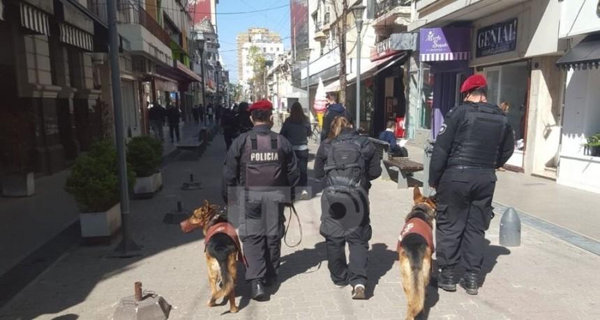 Inspectores, policías y perros para controlar comercios en la peatonal