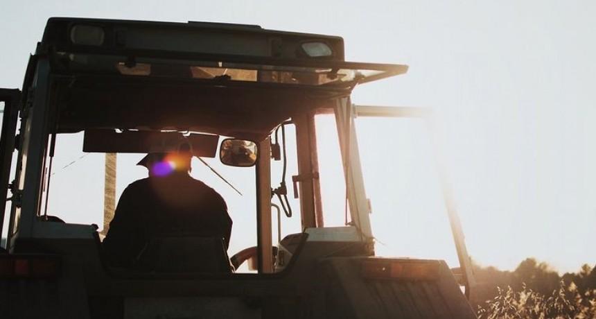 Cuarentena: el agro fue uno de los sectores que menos cayó