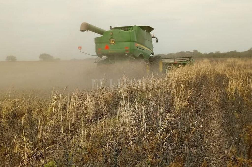 El Estado se queda con el 60,9% de la renta que genera una hectárea agrícola