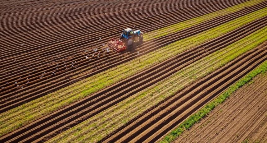Día Mundial de los Fertilizantes: un recurso clave para asegurar los alimentos que demanda el mundo