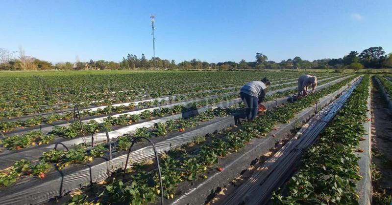 Santa Rosa de Calchines celebrará el Primer Encuentro de la Mujer Rural