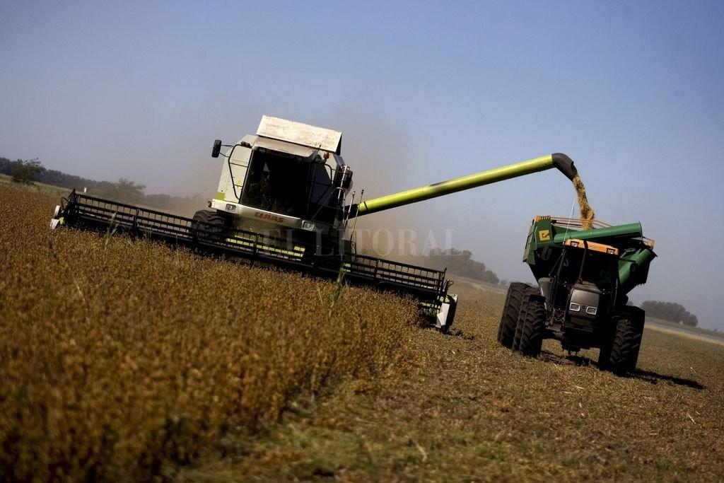 Todo no se puede: la campaña agrícola tendría menos volumen pero buenos precios
