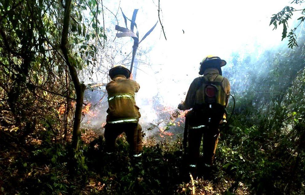 Misiones: focos de incendio se multiplican y los bomberos no dan abasto