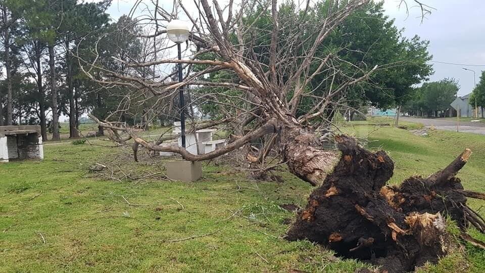 En solo 10 minutos, un temporal provocó destrozos en El Trébol