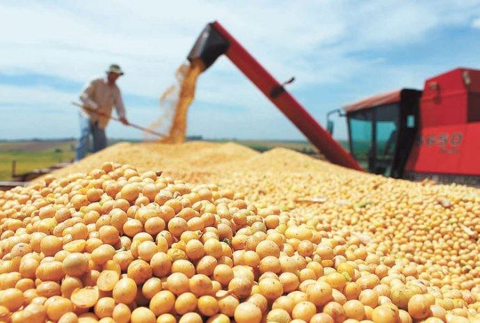 Claves para ganar con la agricultura