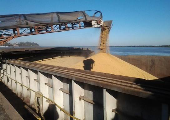 Buena medida para productores y operadores de granos