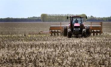 Las lluvias trajeron alivio al campo para continuar con la siembra de soja y maíz