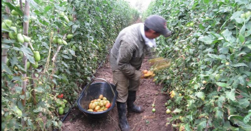 Los trabajadores rurales cobrarán un bono de fin de año
