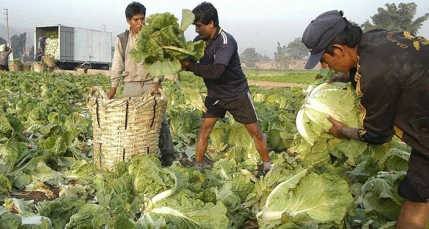 Del campo a la góndola, el precio de frutas y verduras se quintuplica