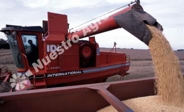 El USDA recortó sus estimaciones para las producciones de soja y maíz en Argentina