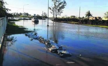 Desolador panorama en Melincué tras las abundantes lluvias
